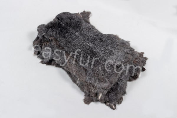 Rabbit Skins in gray with white tips