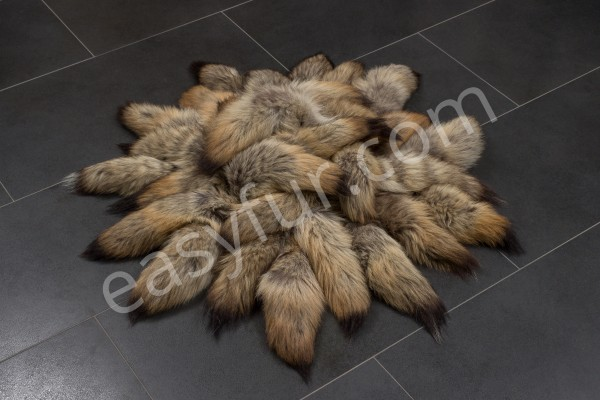 Canadian Coyote Tails