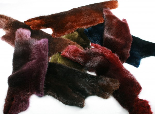 Custom Colorations for Beaver Skins (Fur Harvesters)