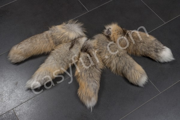Golden Island Fox Tails
