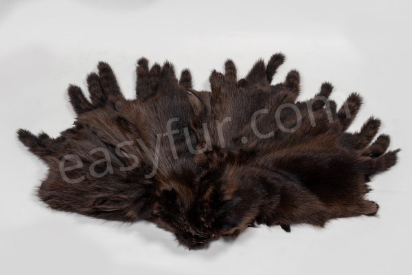Raccoon Fur Skins in dark brown