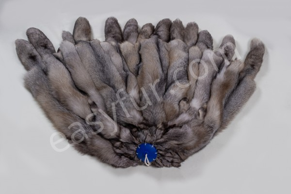 Blue Frost Fox Brown Type